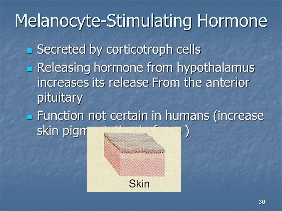 Melanocyte-Stimulating Hormone