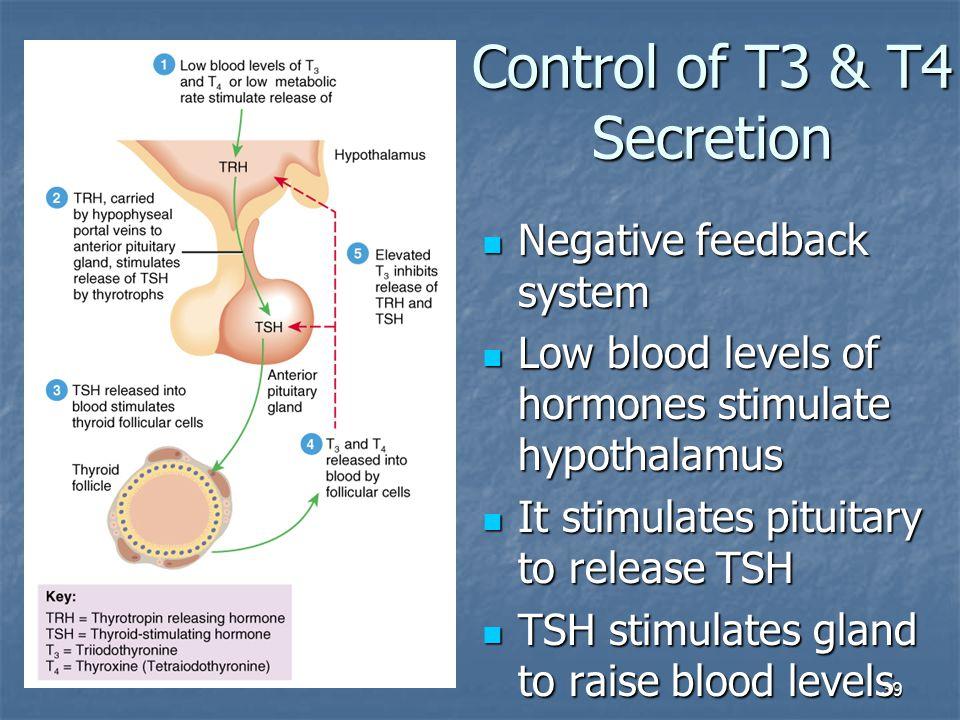 Control of T3 & T4 Secretion
