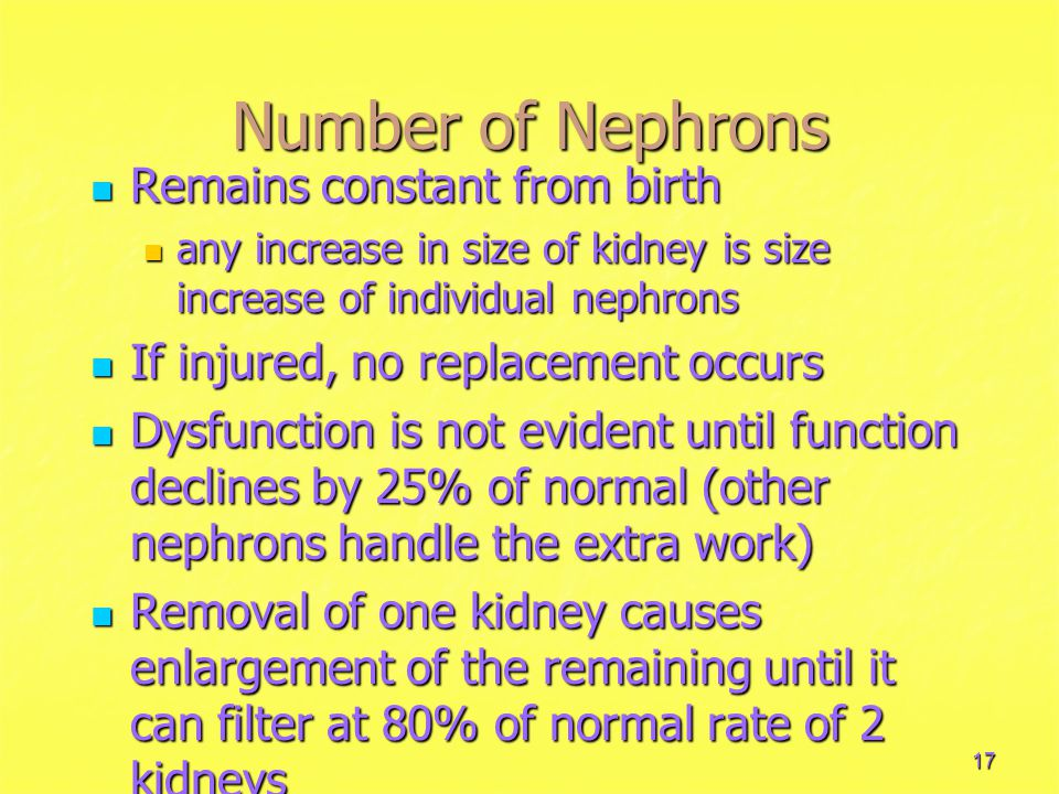 Number of Nephrons Remains constant from birth