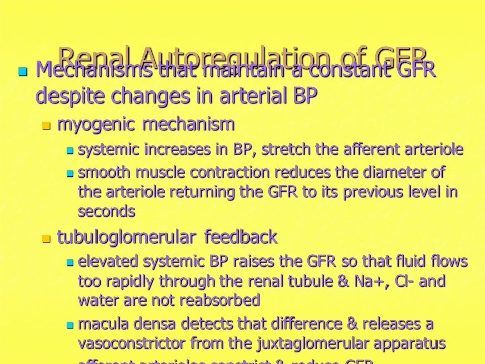 Renal Autoregulation of GFR