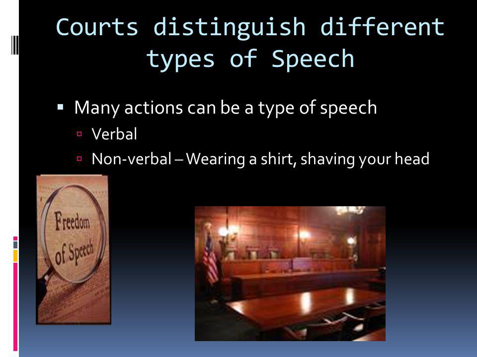 Courts distinguish different types of Speech