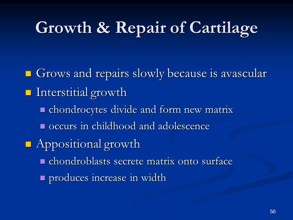Growth & Repair of Cartilage
