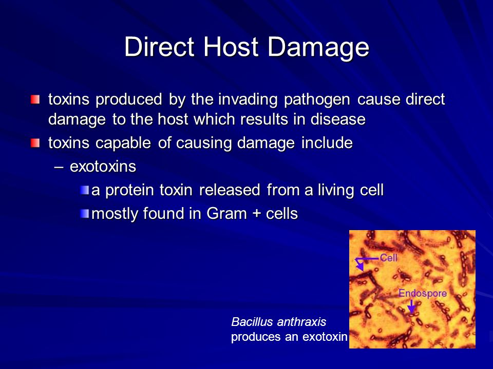 Direct Host Damage toxins produced by the invading pathogen cause direct damage to the host which results in disease.