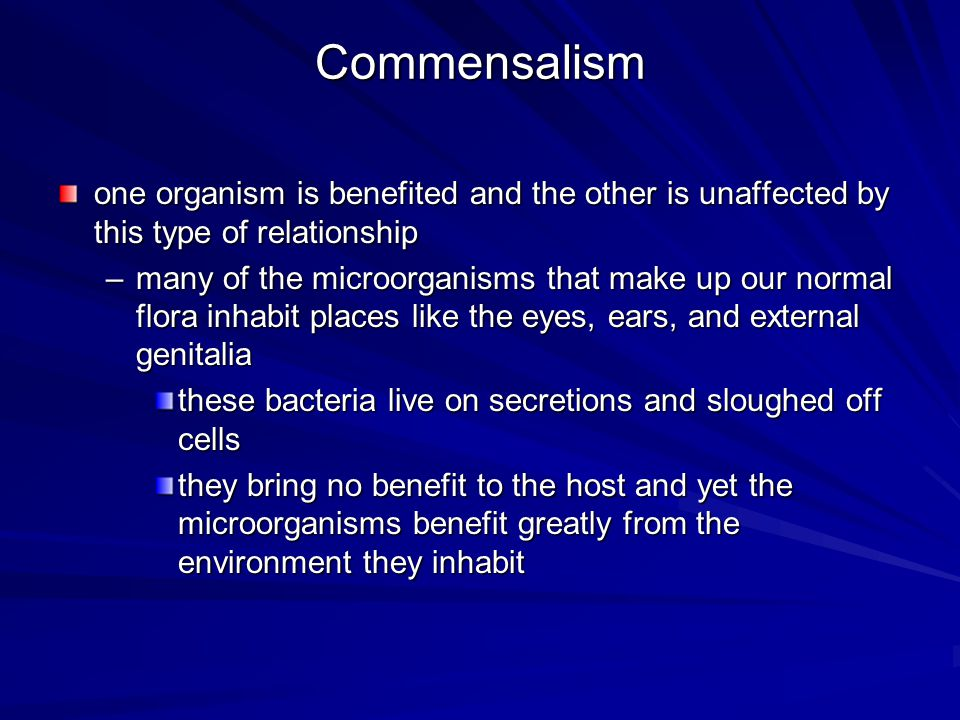 Commensalism one organism is benefited and the other is unaffected by this type of relationship.
