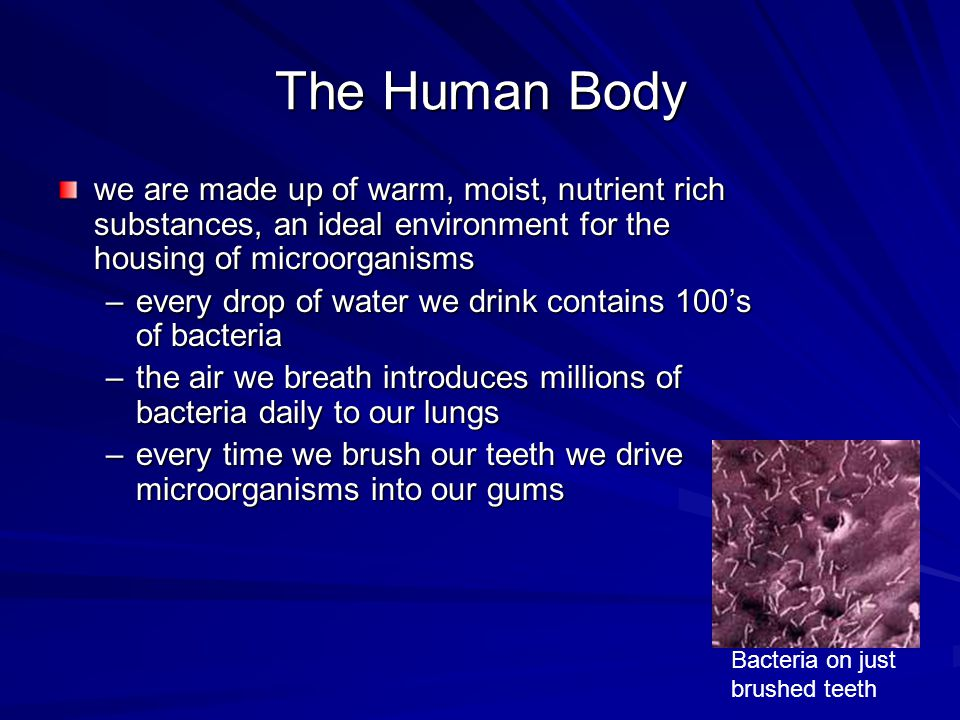 The Human Body we are made up of warm, moist, nutrient rich substances, an ideal environment for the housing of microorganisms.