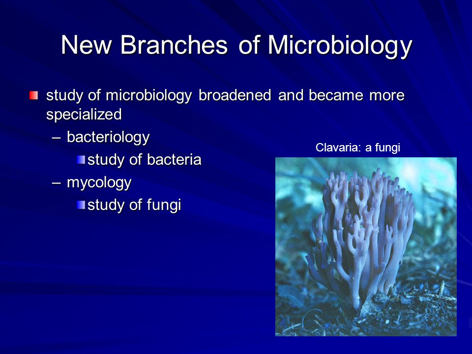 New Branches of Microbiology