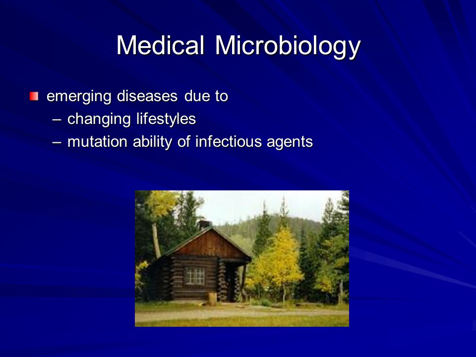 Medical Microbiology Successes