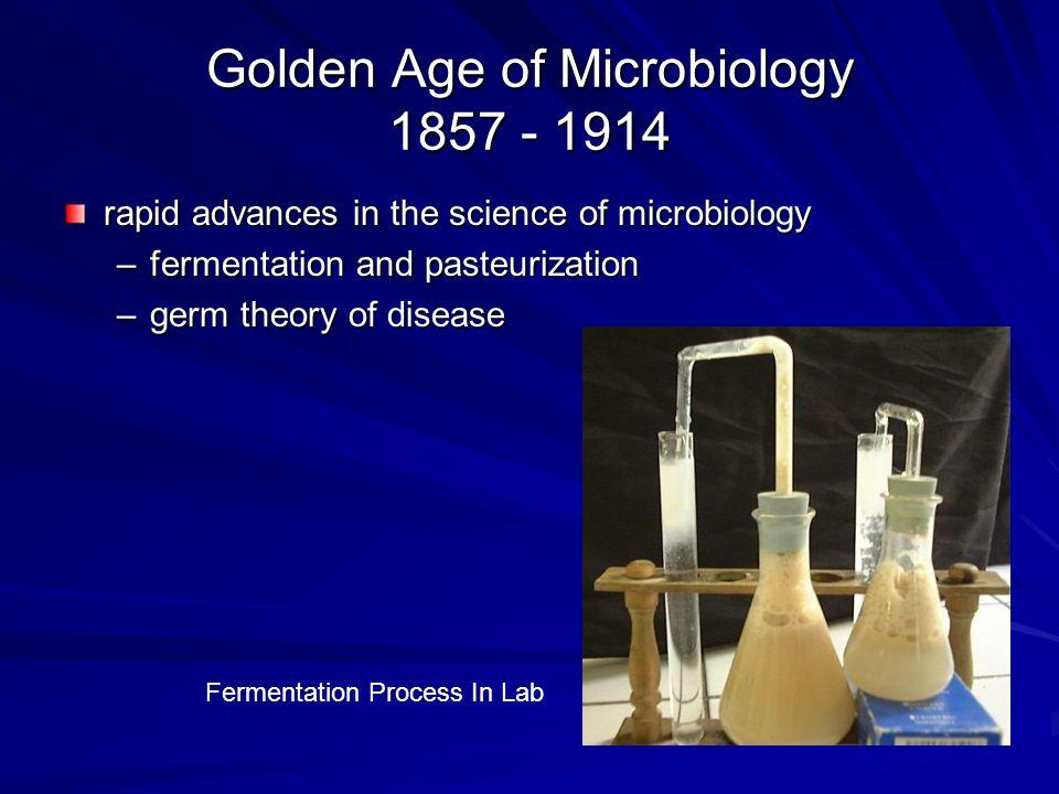 Fermentation & Pasteurization