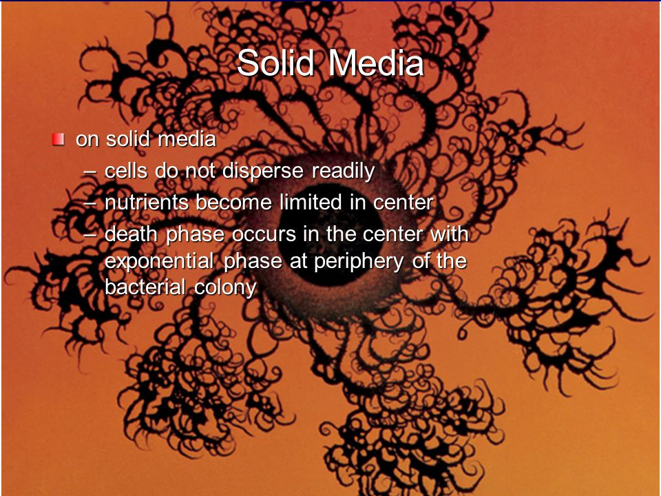 Solid Media on solid media cells do not disperse readily
