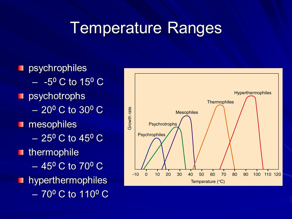 Temperature Ranges psychrophiles -50 C to 150 C psychotrophs