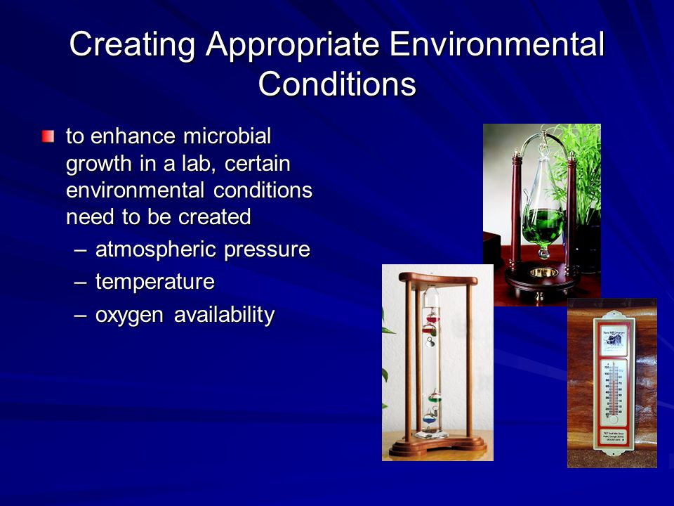 Creating Appropriate Environmental Conditions