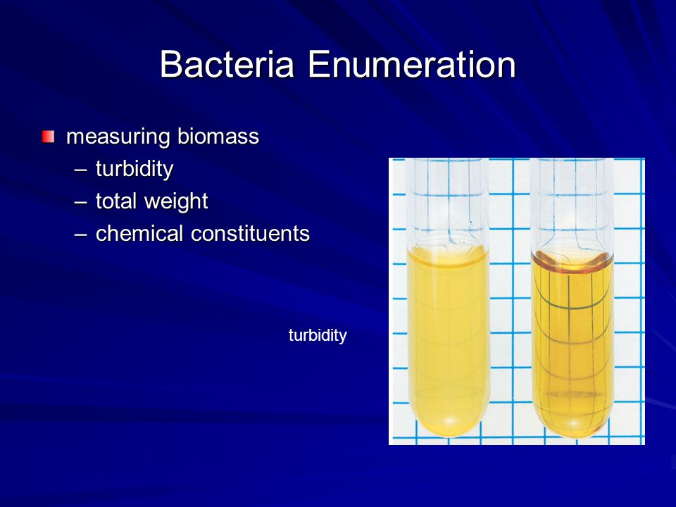 Bacteria Enumeration measuring biomass turbidity total weight