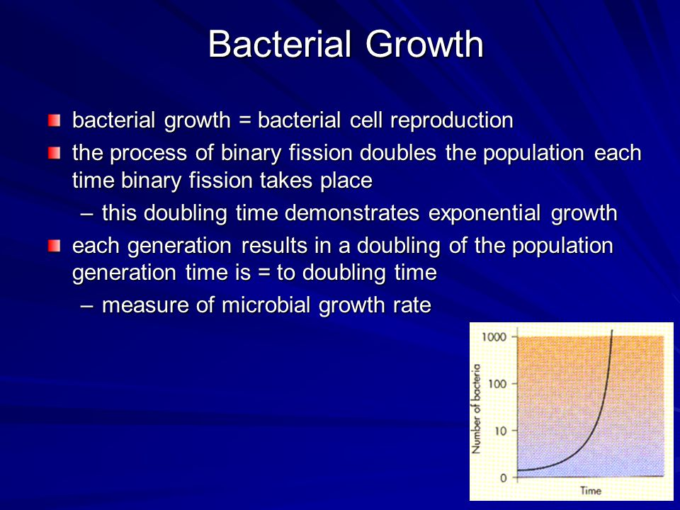 Bacterial Growth bacterial growth = bacterial cell reproduction