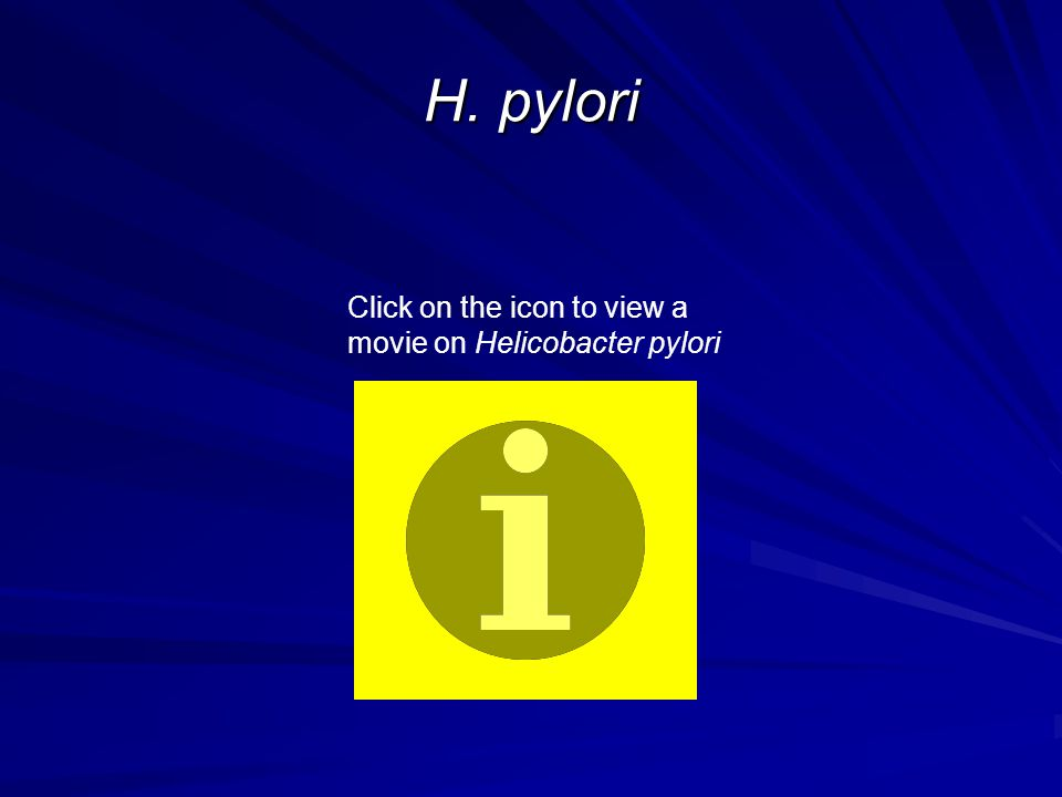 H. pylori Click on the icon to view a movie on Helicobacter pylori