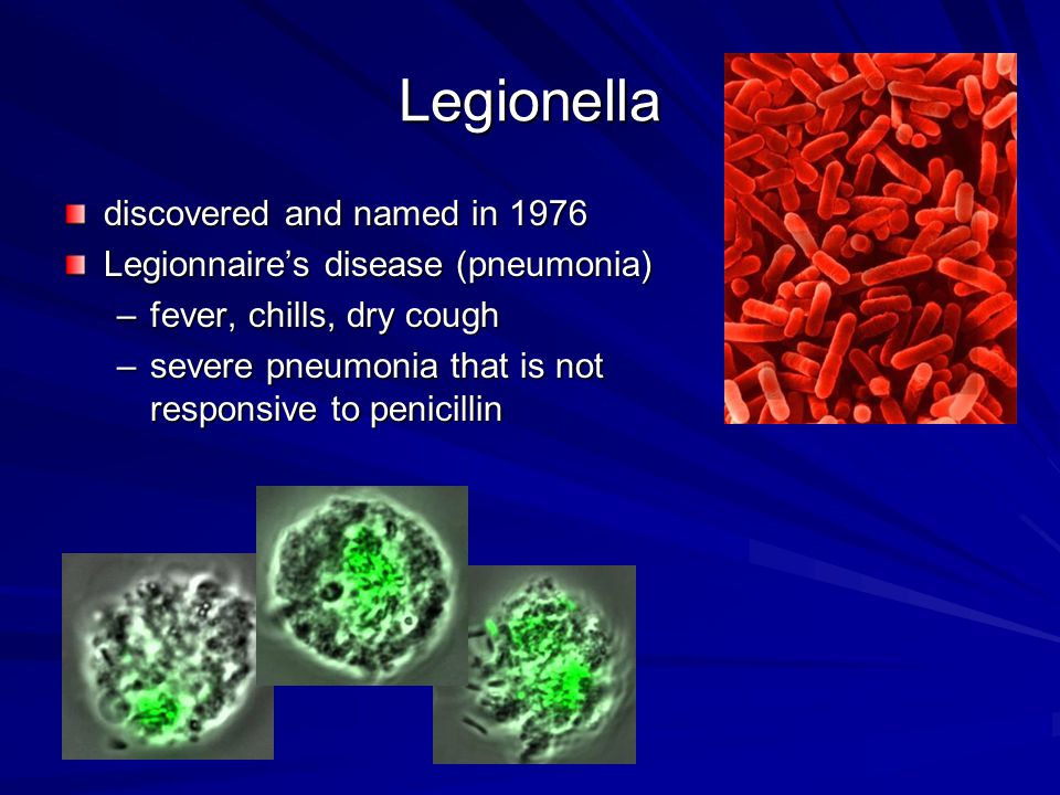 Legionella discovered and named in 1976