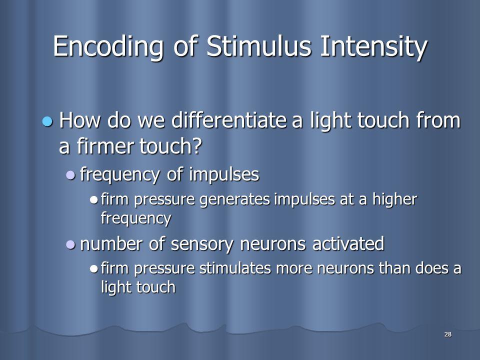 Encoding of Stimulus Intensity