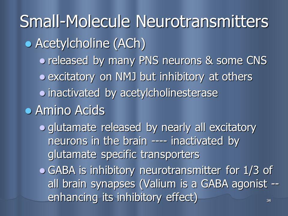 Small-Molecule Neurotransmitters