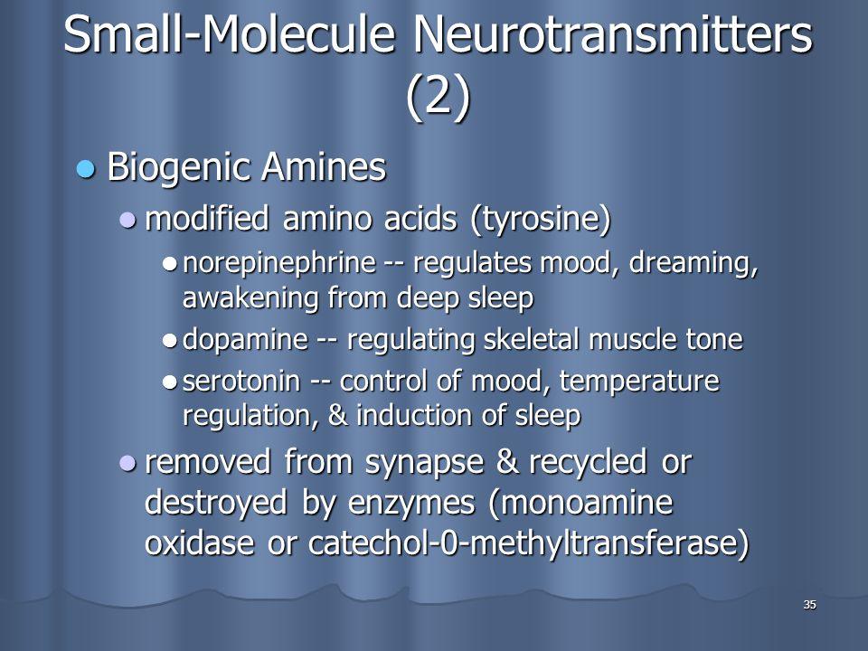 Small-Molecule Neurotransmitters (2)