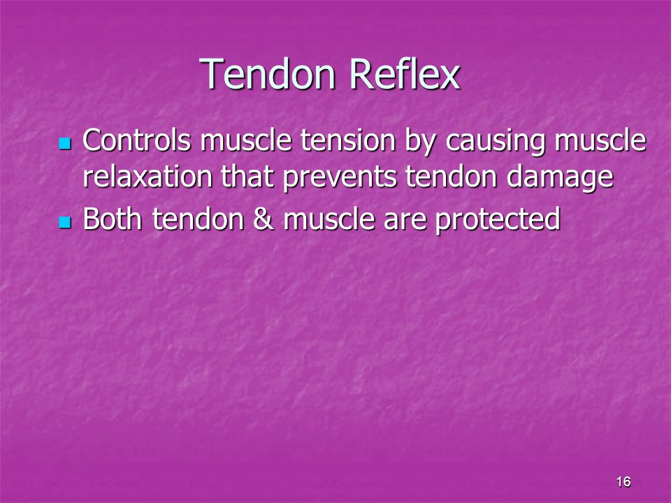 Tendon Reflex Controls muscle tension by causing muscle relaxation that prevents tendon damage.