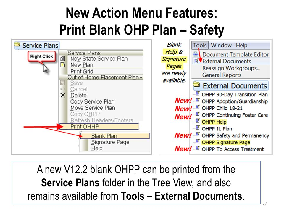 New Action Menu Features: Print Blank OHP Plan – Safety