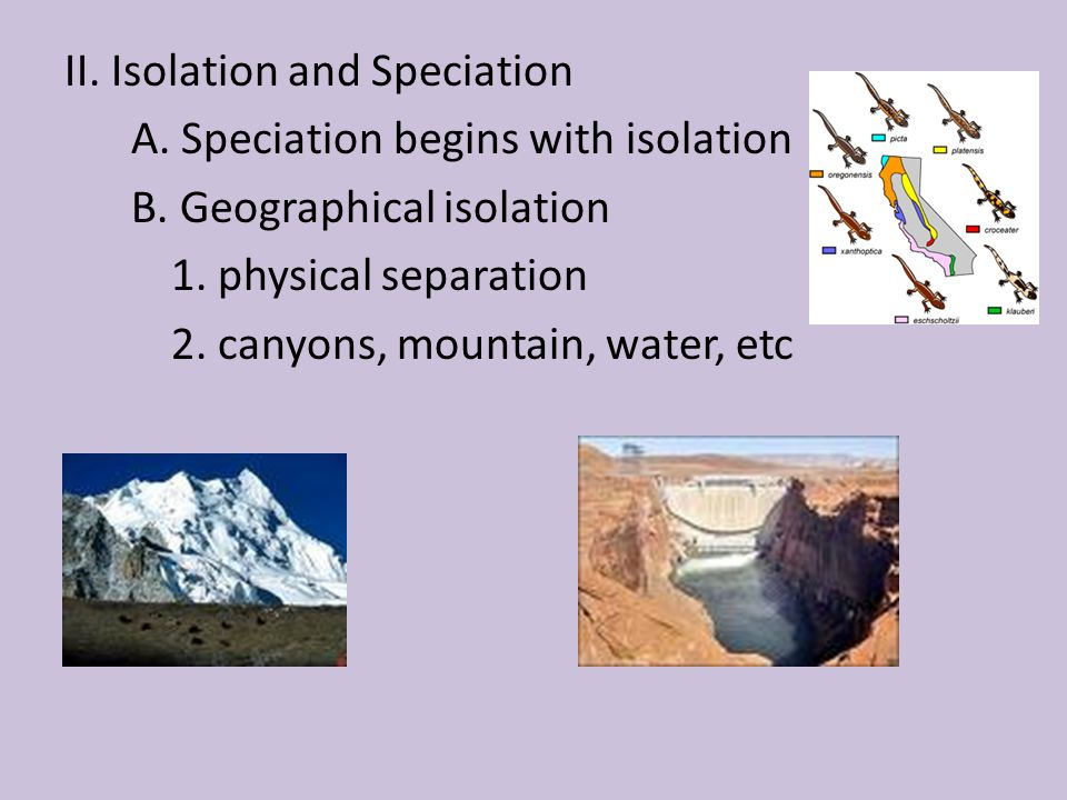 II. Isolation and Speciation A. Speciation begins with isolation B