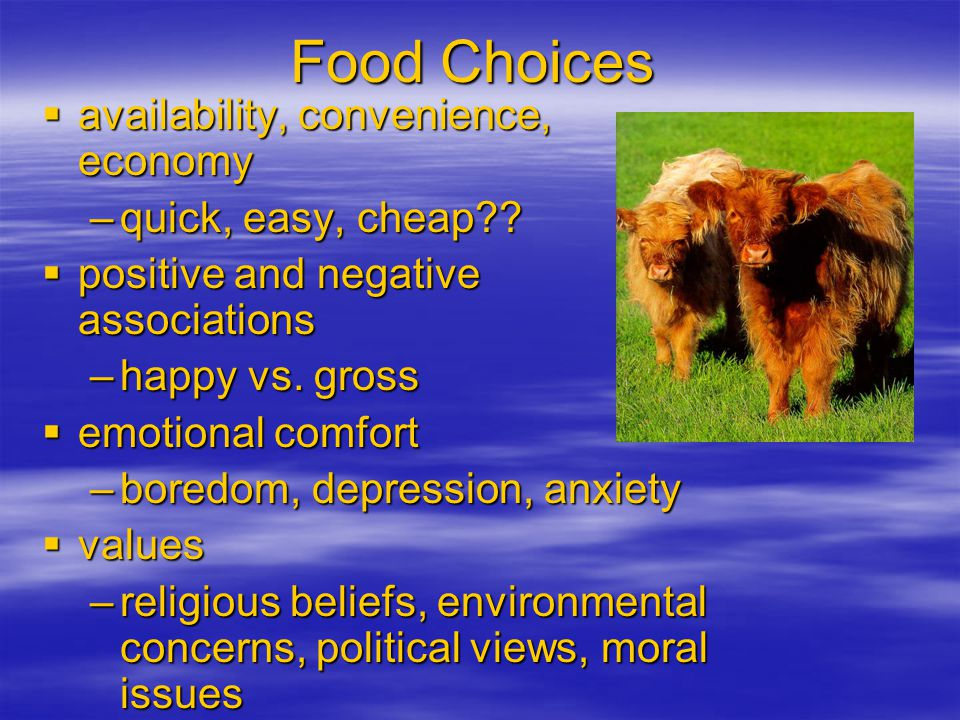 Food Choices availability, convenience, economy quick, easy, cheap