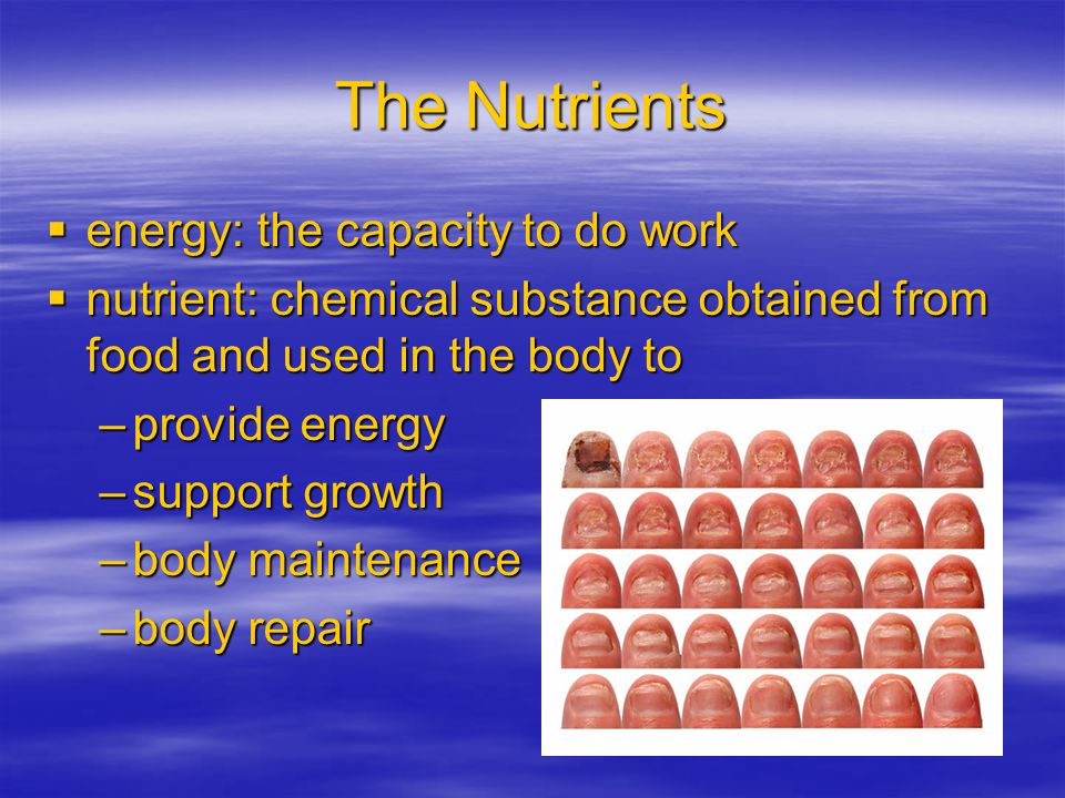 The Nutrients energy: the capacity to do work