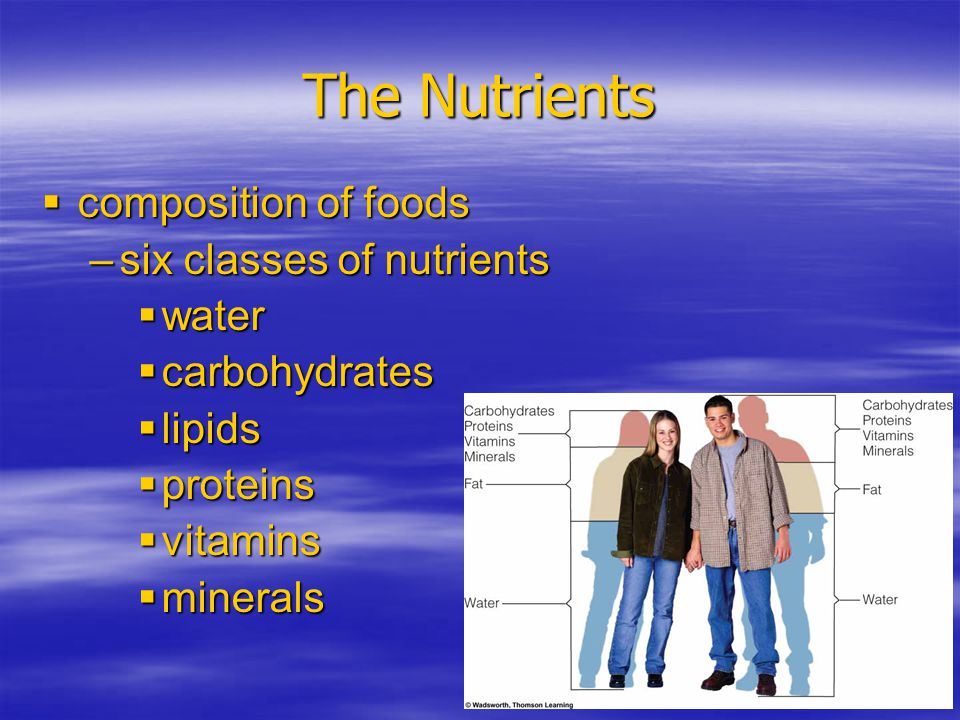 The Nutrients composition of foods six classes of nutrients water
