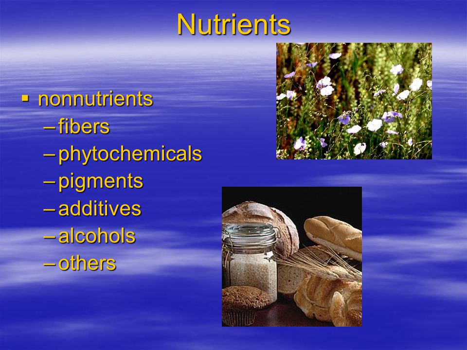 Nutrients nonnutrients fibers phytochemicals pigments additives