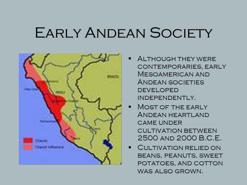 Early Andean Society Although they were contemporaries, early Mesoamerican and Andean societies developed independently.