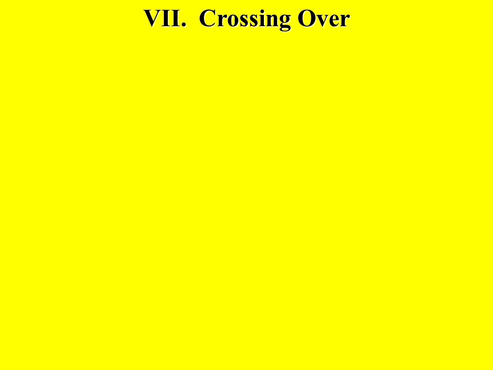 VII. Crossing Over