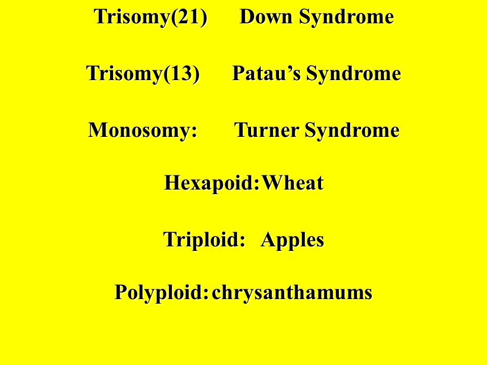 Trisomy(21) Down Syndrome