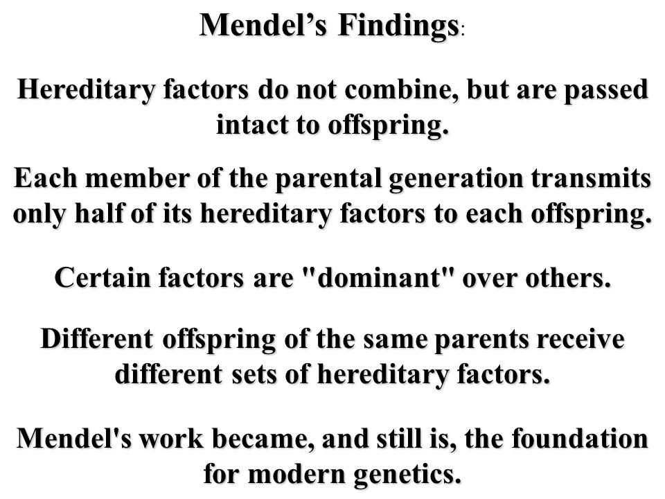 Mendel's Findings: Hereditary factors do not combine, but are passed intact to offspring. Each member of the parental generation transmits.