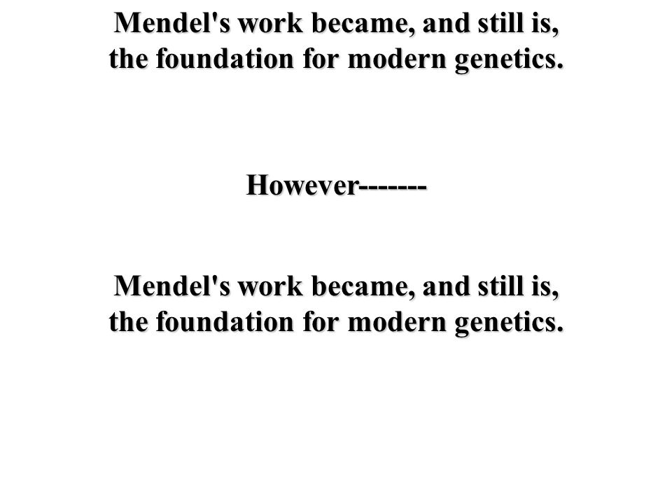 Mendel s work became, and still is,