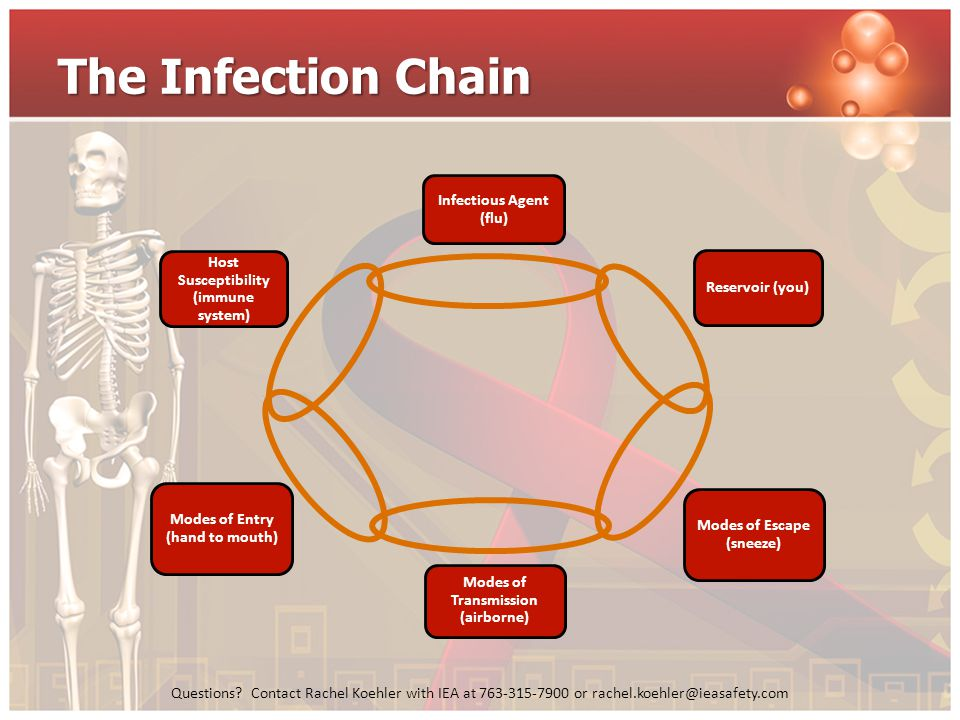 The Infection Chain Infectious Agent (flu)
