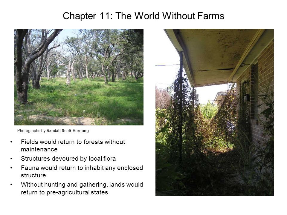 Chapter 11: The World Without Farms