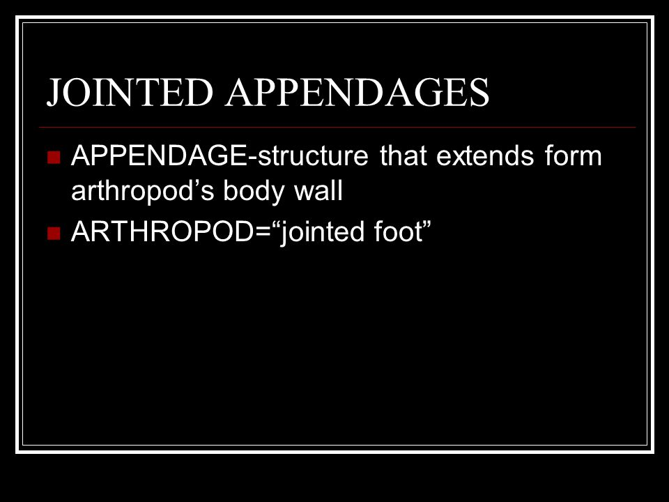 JOINTED APPENDAGES APPENDAGE-structure that extends form arthropod's body wall.