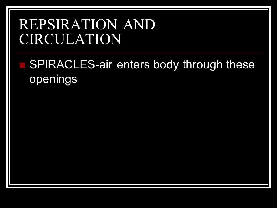 REPSIRATION AND CIRCULATION