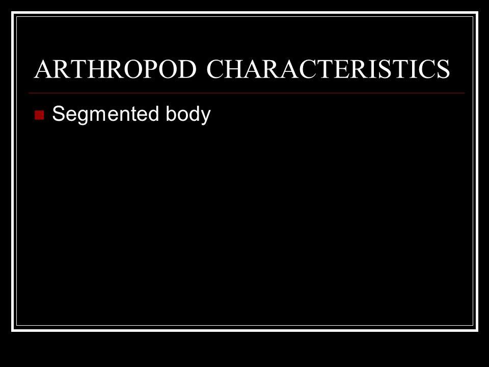 ARTHROPOD CHARACTERISTICS