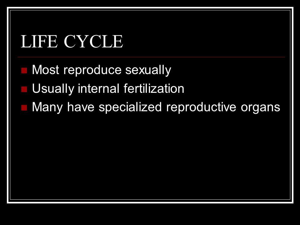 LIFE CYCLE Most reproduce sexually Usually internal fertilization