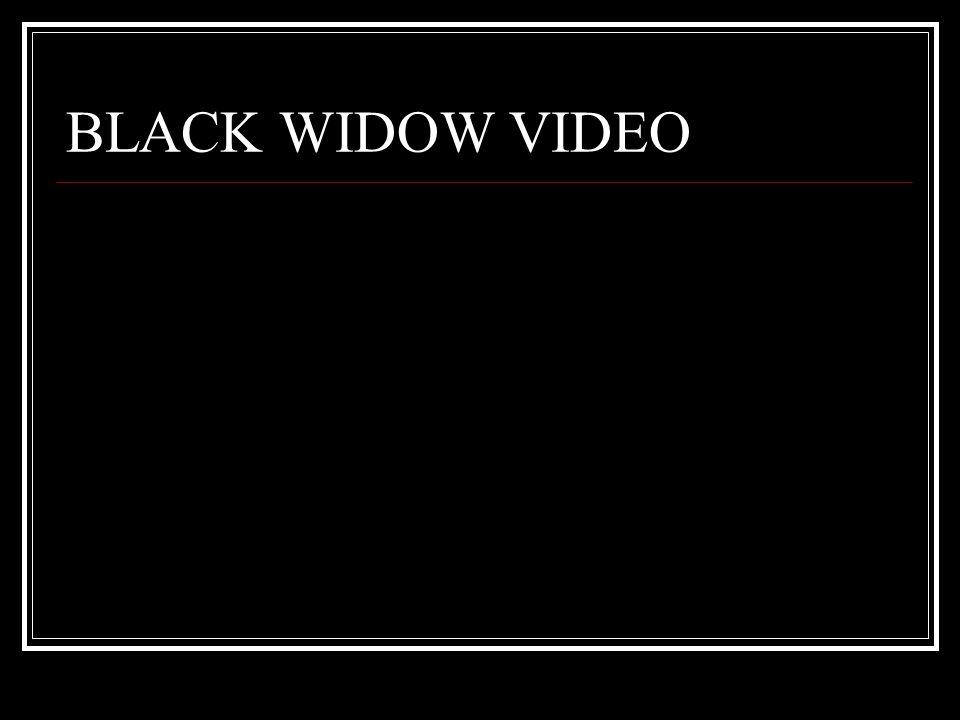 BLACK WIDOW VIDEO