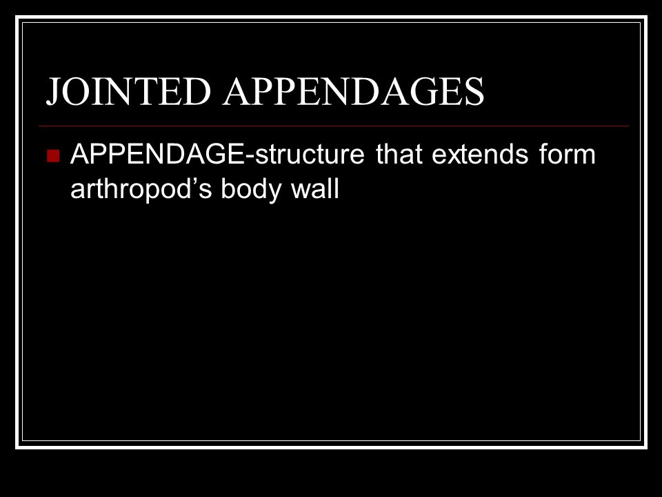 JOINTED APPENDAGES APPENDAGE-structure that extends form arthropod's body wall