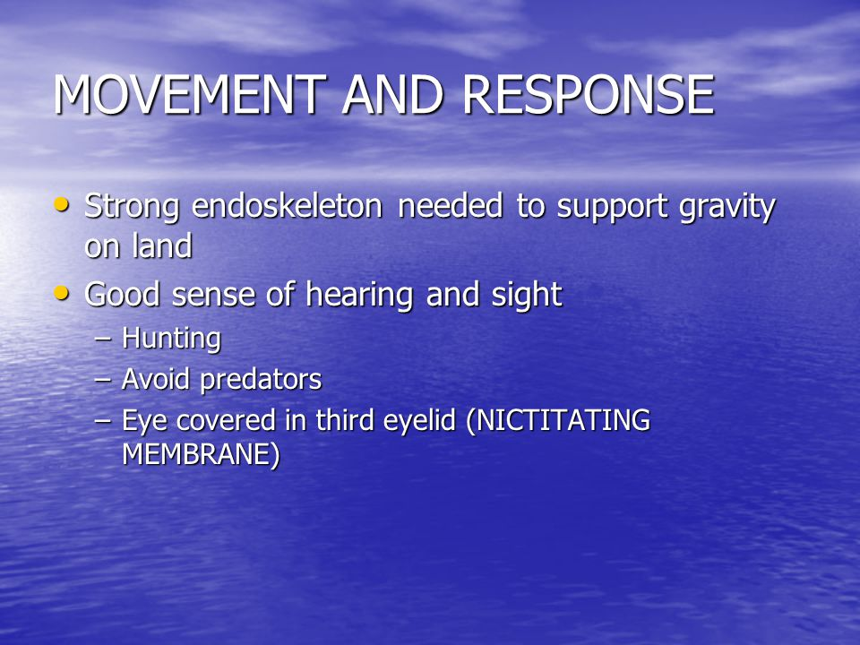 MOVEMENT AND RESPONSE Strong endoskeleton needed to support gravity on land. Good sense of hearing and sight.