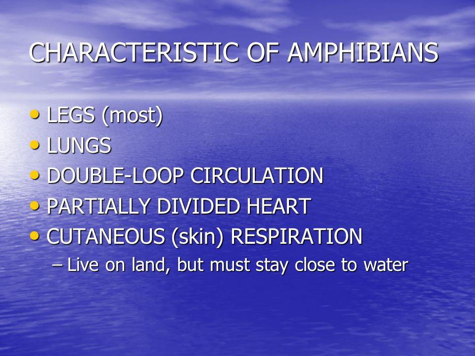CHARACTERISTIC OF AMPHIBIANS