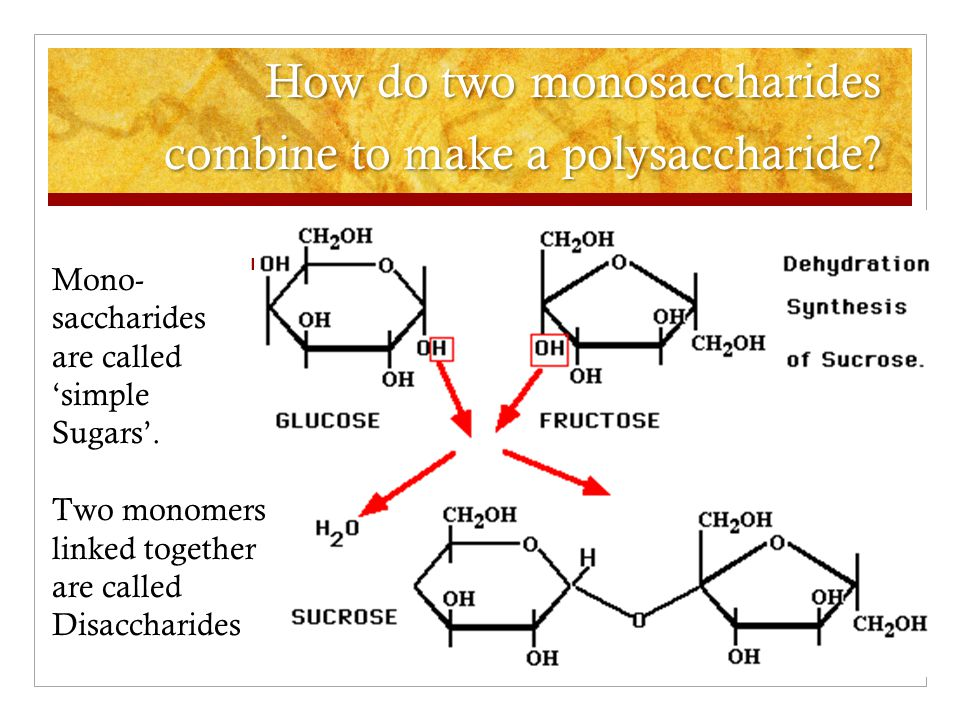 How do two monosaccharides combine to make a polysaccharide
