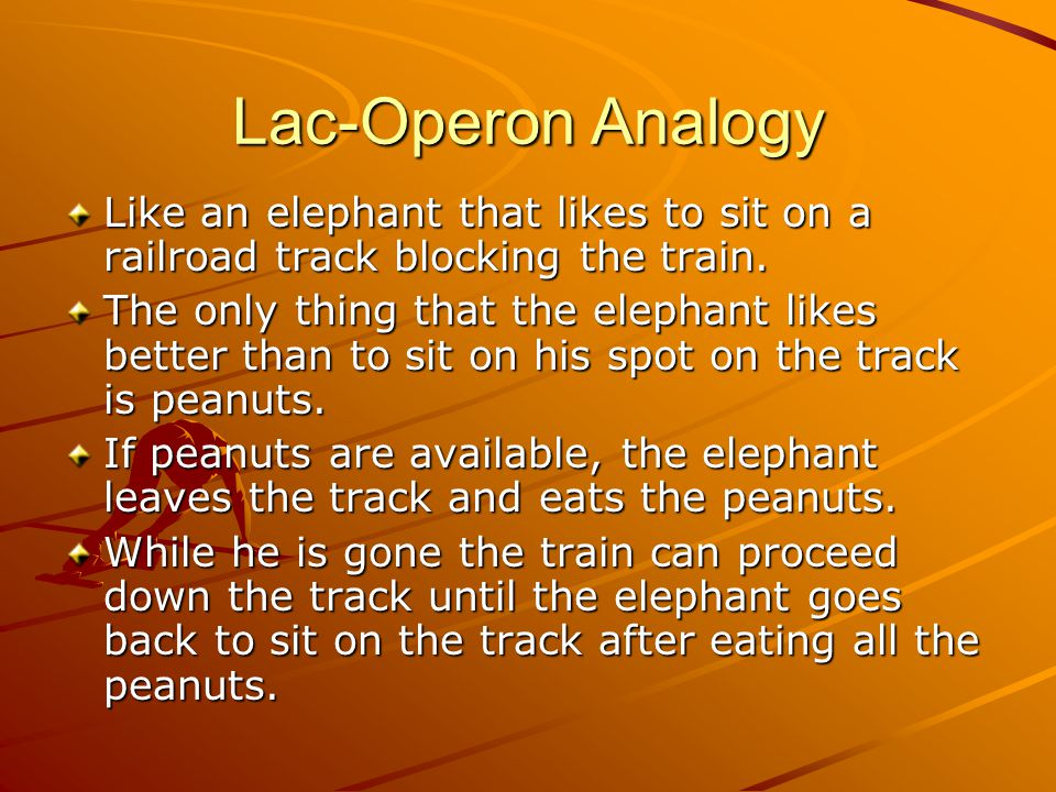 Lac-Operon Analogy Like an elephant that likes to sit on a railroad track blocking the train.