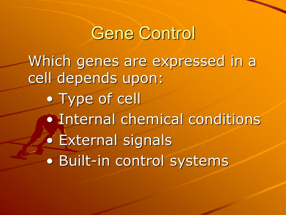 Gene Control • Type of cell • Internal chemical conditions
