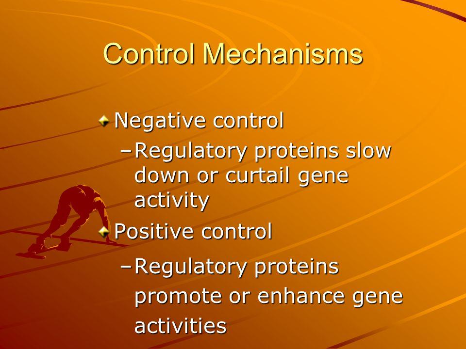 Control Mechanisms Negative control
