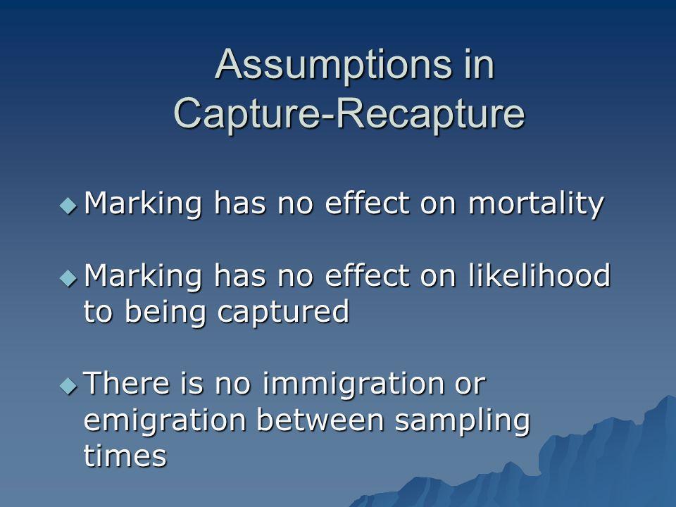 Assumptions in Capture-Recapture