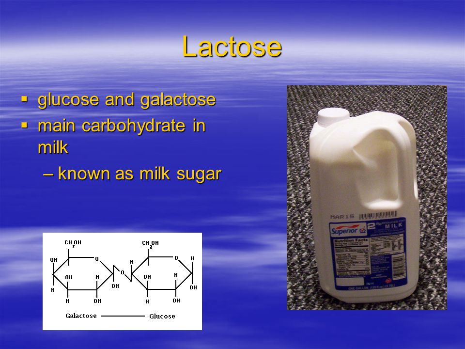 Lactose glucose and galactose main carbohydrate in milk